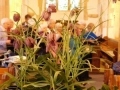 a beautiful Fritillary display